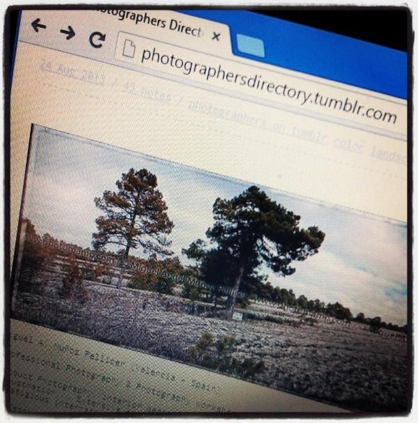 Publicado en PhotographersDirectory